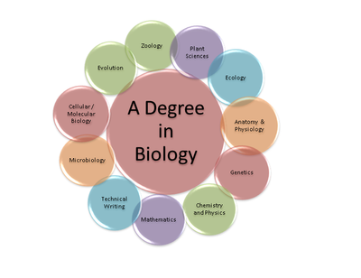 Biology Expertise diagram final
