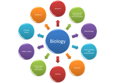 Biology Employment Profile final